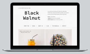 blackwalnut-wordpress-theme_slider01