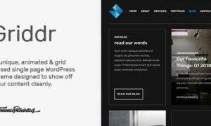 griddr-animated-grid-creative-wordpress-theme